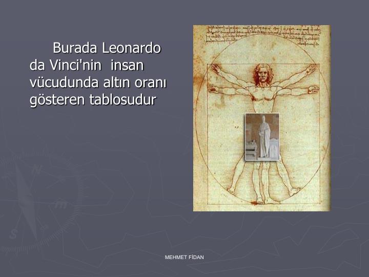 Burada Leonardo da Vinci'nin  insan vücudunda altın oranı gösteren tablosudur