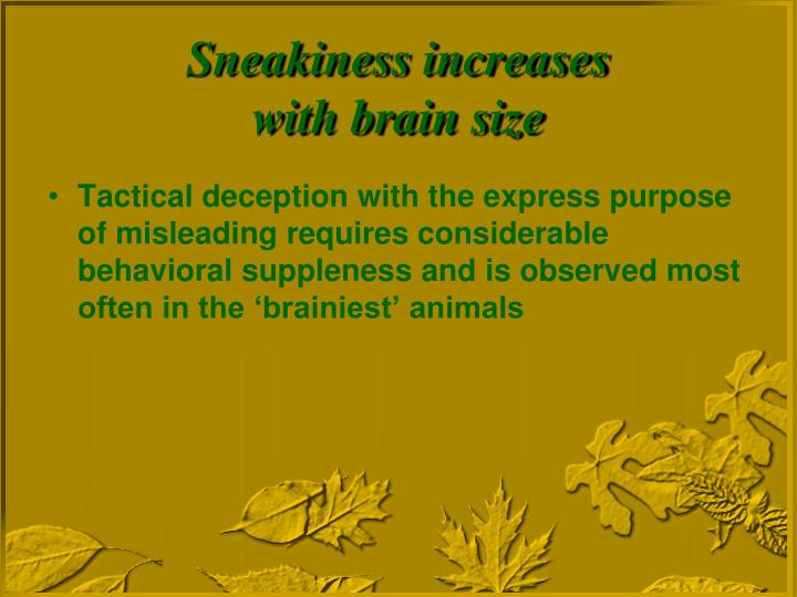 Tactical deception with the express purpose of misleading requires considerable behavioral suppleness and is observed most often in the 'brainiest' animals