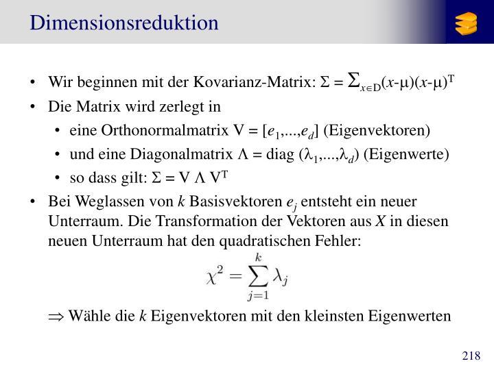 Dimensionsreduktion