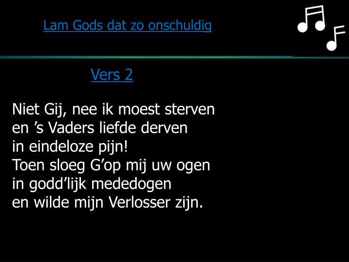 Lam Gods dat zo onschuldig