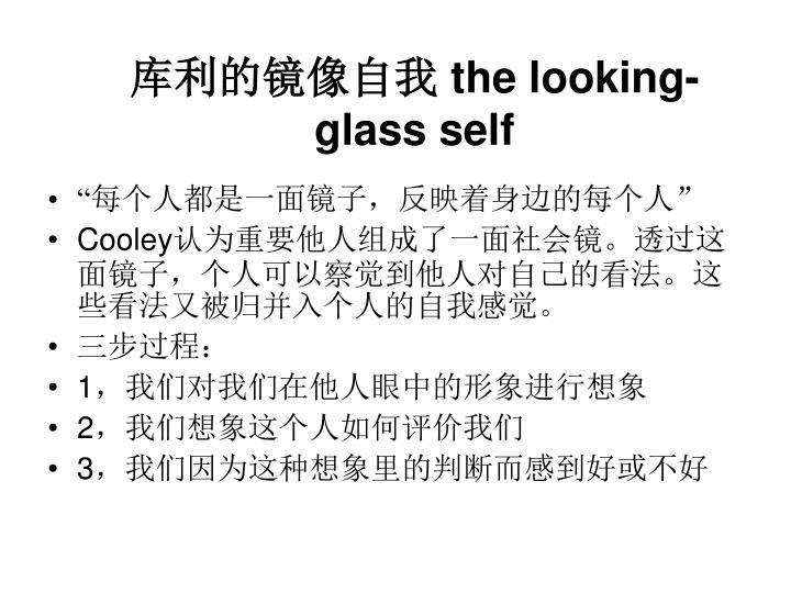库利的镜像自我