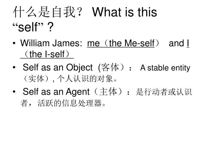 什么是自我?