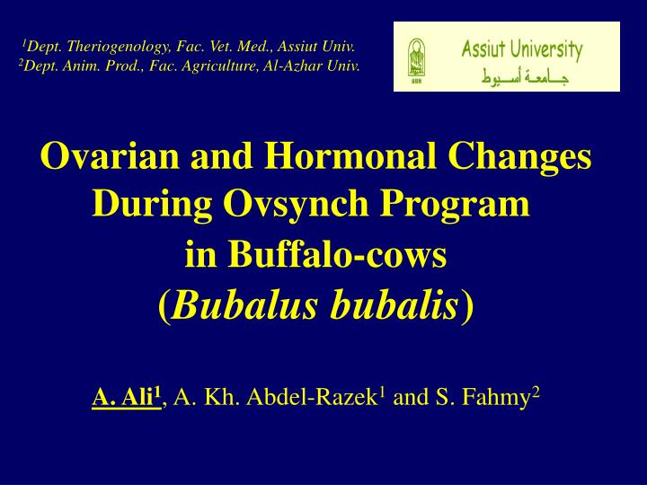 Ovarian and hormonal changes during ovsynch program in buffalo cows bubalus bubalis