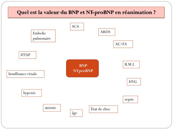 Quel est la valeur du BNP et NT-