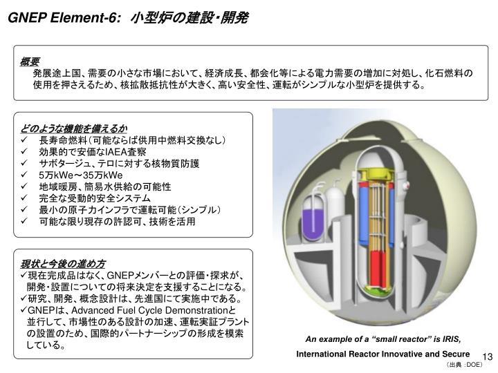 GNEP Element-6: