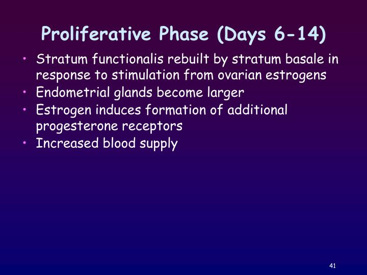Proliferative Phase (Days 6-14)