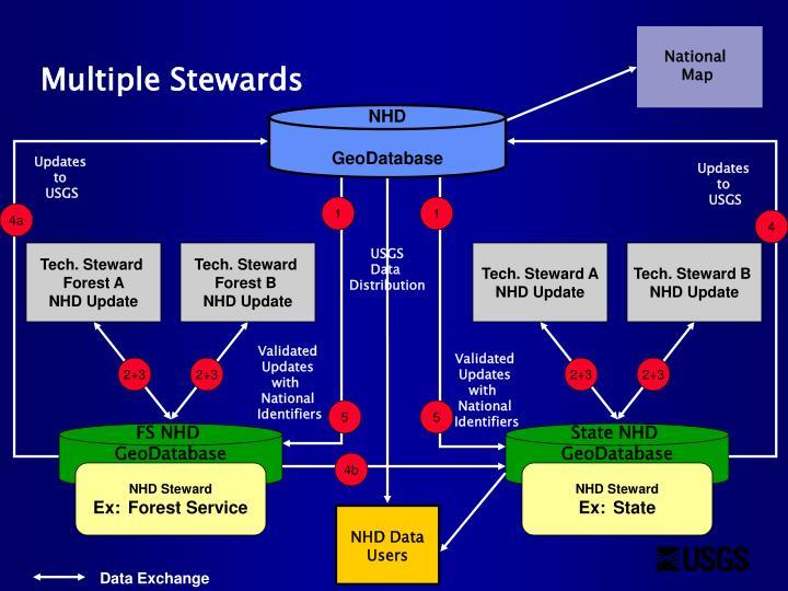 Tech. Steward