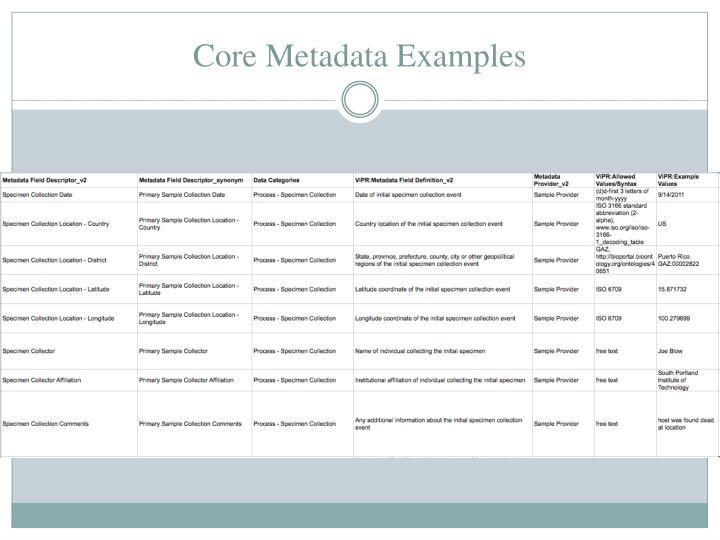 Core Metadata Examples