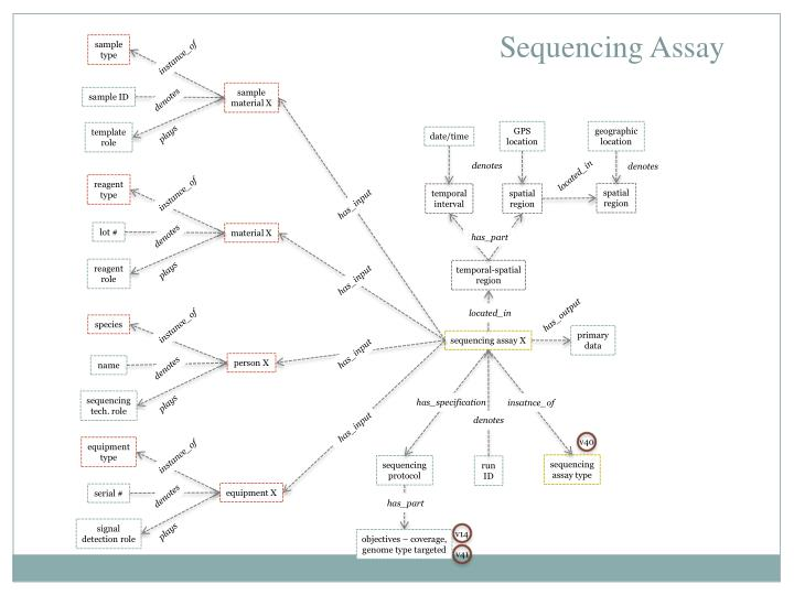 Sequencing Assay