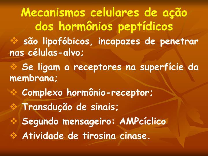 Mecanismos celulares de ação dos hormônios peptídicos
