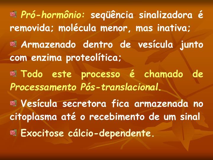 Pró-hormônio: