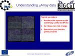 understanding array data1