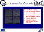 understanding array data2