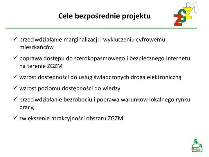 Cele bezpośrednie projektu