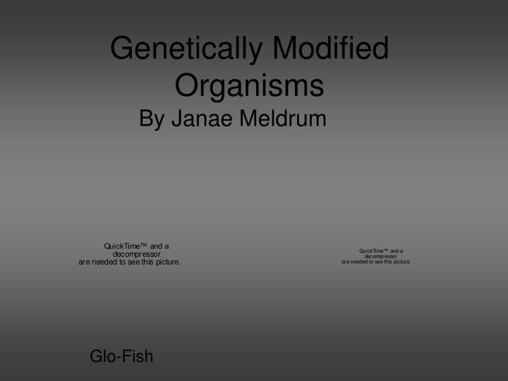 genetically modified organism Although we've been ingesting them for two decades, foods that are genetically modified organisms (gmos) are currently the subject of intense scrutiny.