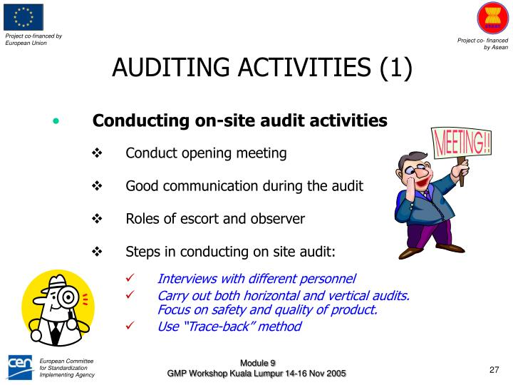AUDITING ACTIVITIES (1)