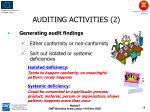auditing activities 2