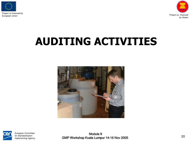 AUDITING ACTIVITIES