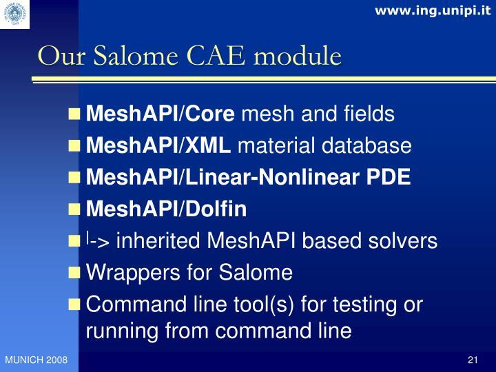 Our Salome CAE module