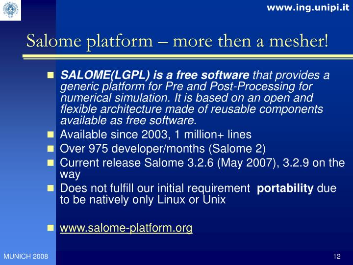 Salome platform – more then a mesher!
