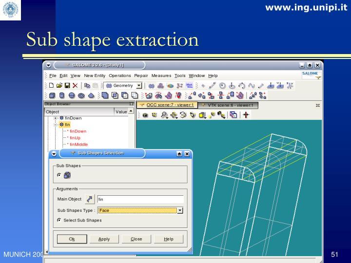 Sub shape extraction