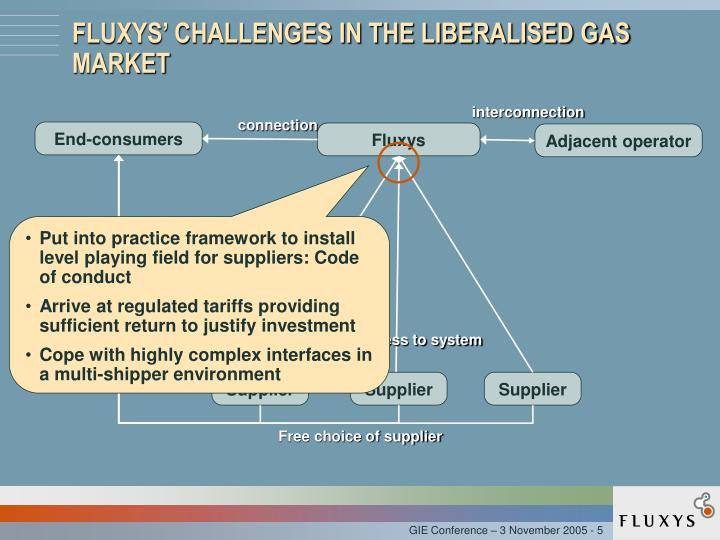 FLUXYS' CHALLENGES IN THE LIBERALISED GAS MARKET