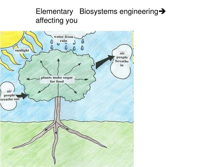 Elementary   Biosystems engineering