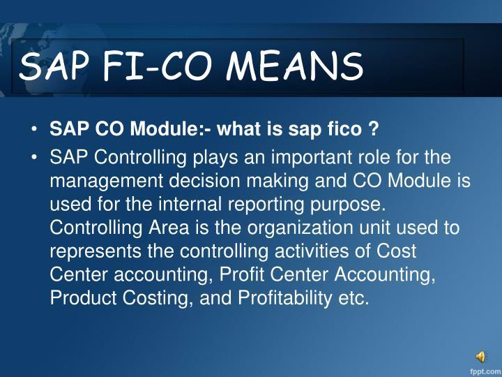 SAP FI-CO MEANS