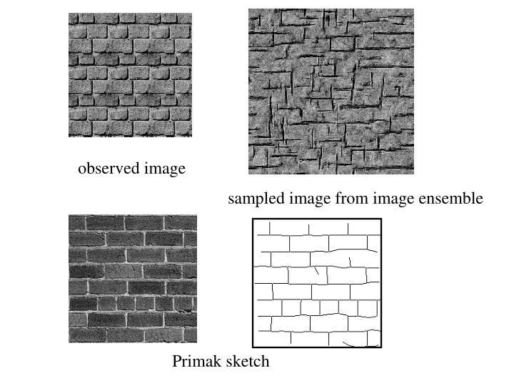 observed image