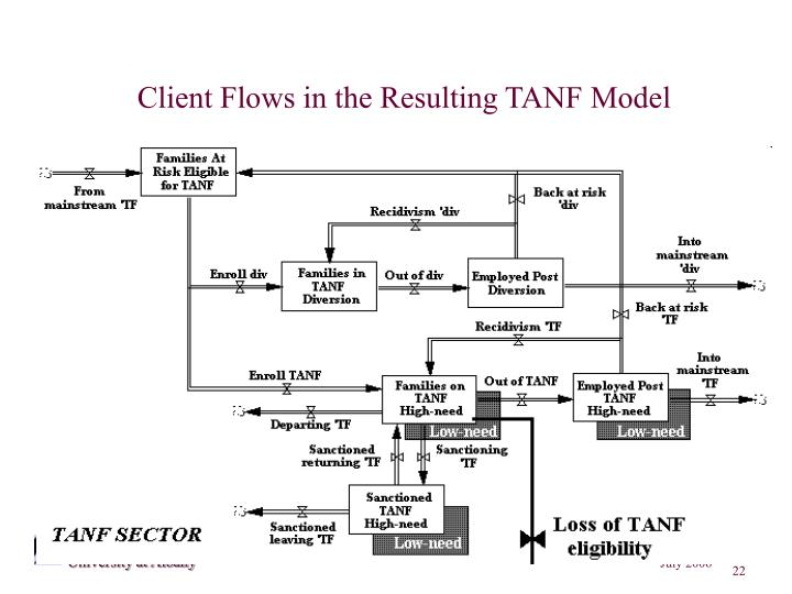 Client Flows in the Resulting TANF Model