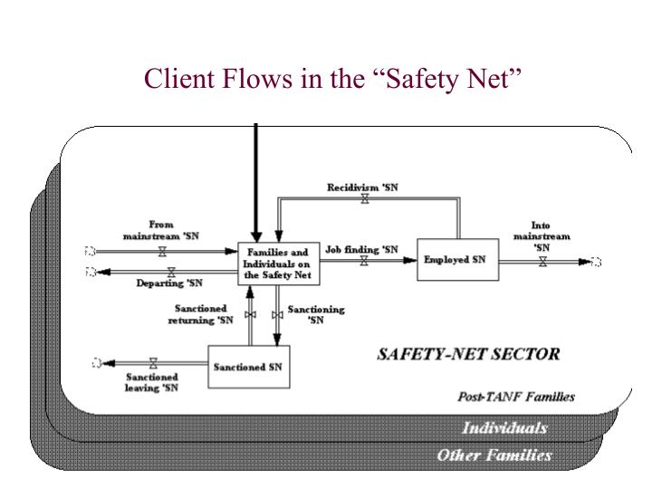 "Client Flows in the ""Safety Net"""