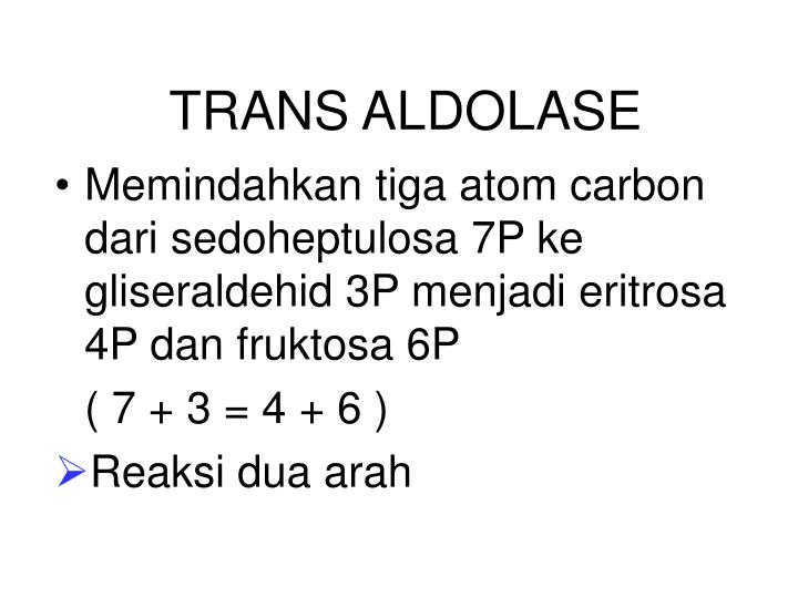 TRANS ALDOLASE