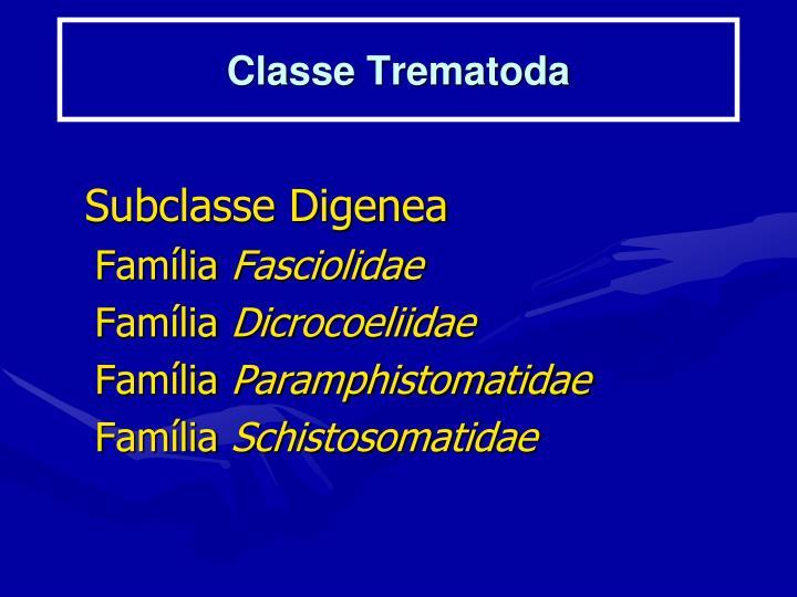 Classe Trematoda