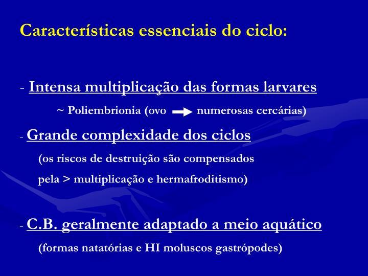Características essenciais do ciclo:
