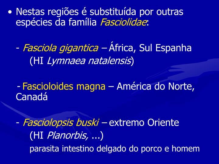 Nestas regiões é substituída por outras espécies da família
