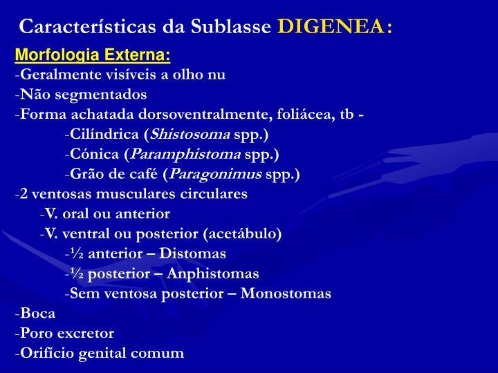 Características da Sublasse