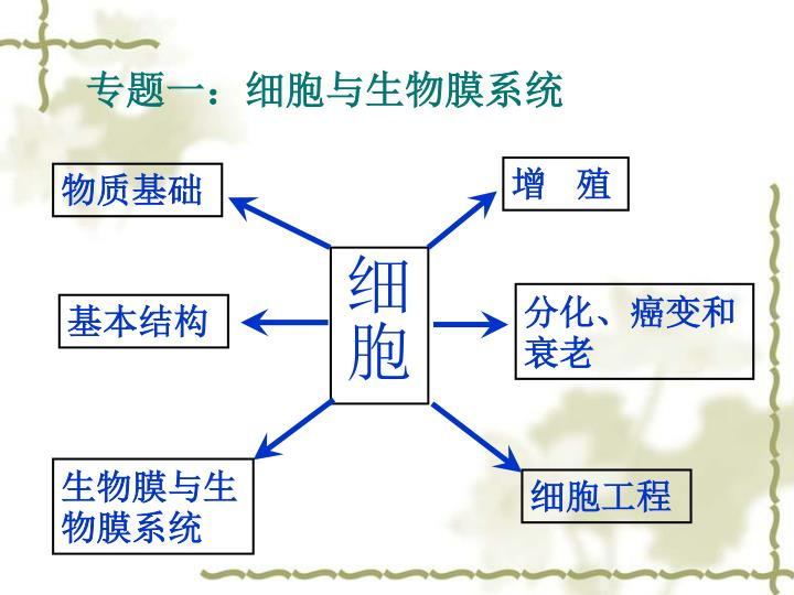 专题一:细胞与生物膜系统