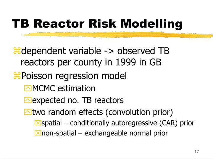 TB Reactor Risk Modelling