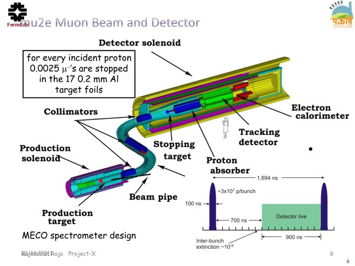 mu2e Muon Beam and Detector