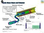 mu2e muon beam and detector