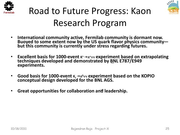 Road to Future Progress: Kaon Research Program