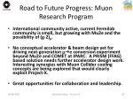 road to future progress muon research program