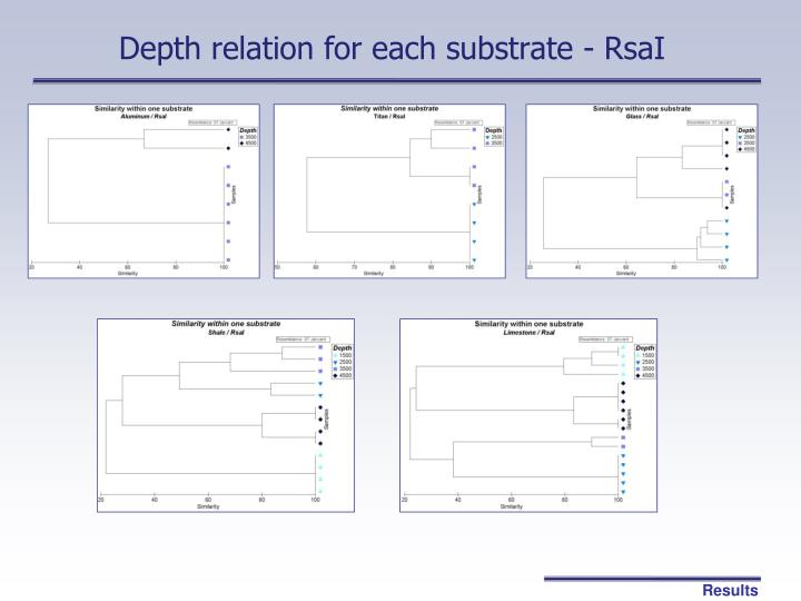 Depth relation for each substrate - RsaI