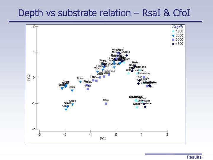 Depth vs substrate relation – RsaI & CfoI
