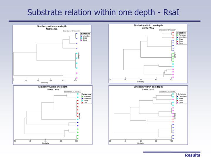Substrate relation within one depth - RsaI