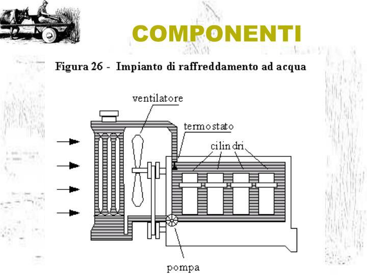 COMPONENTI