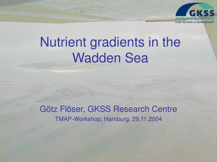Nutrient gradients in the wadden sea