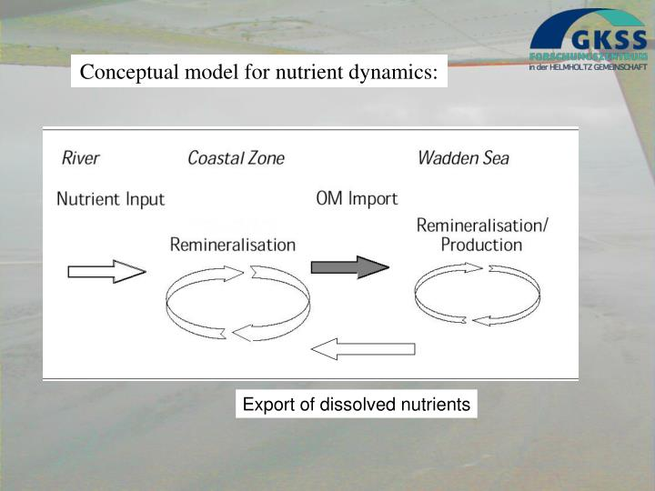 Export of dissolved nutrients