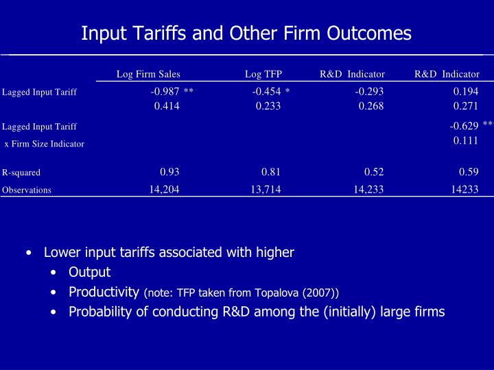 Input Tariffs and Other Firm Outcomes