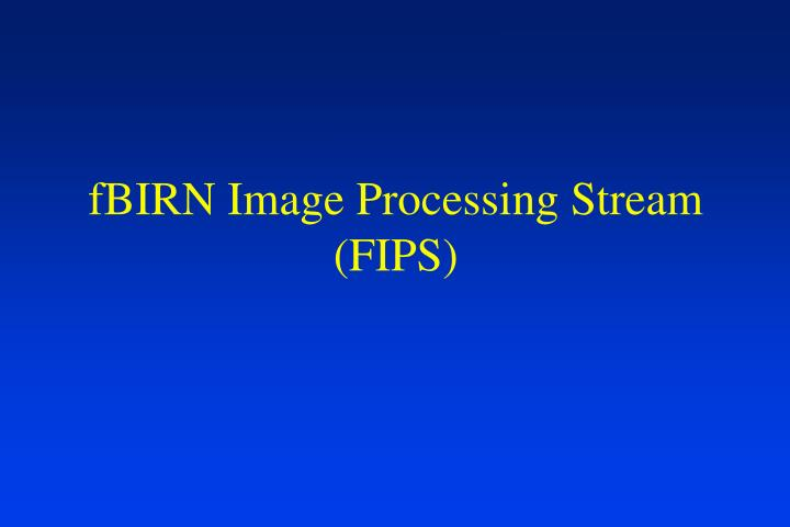Fbirn image processing stream fips
